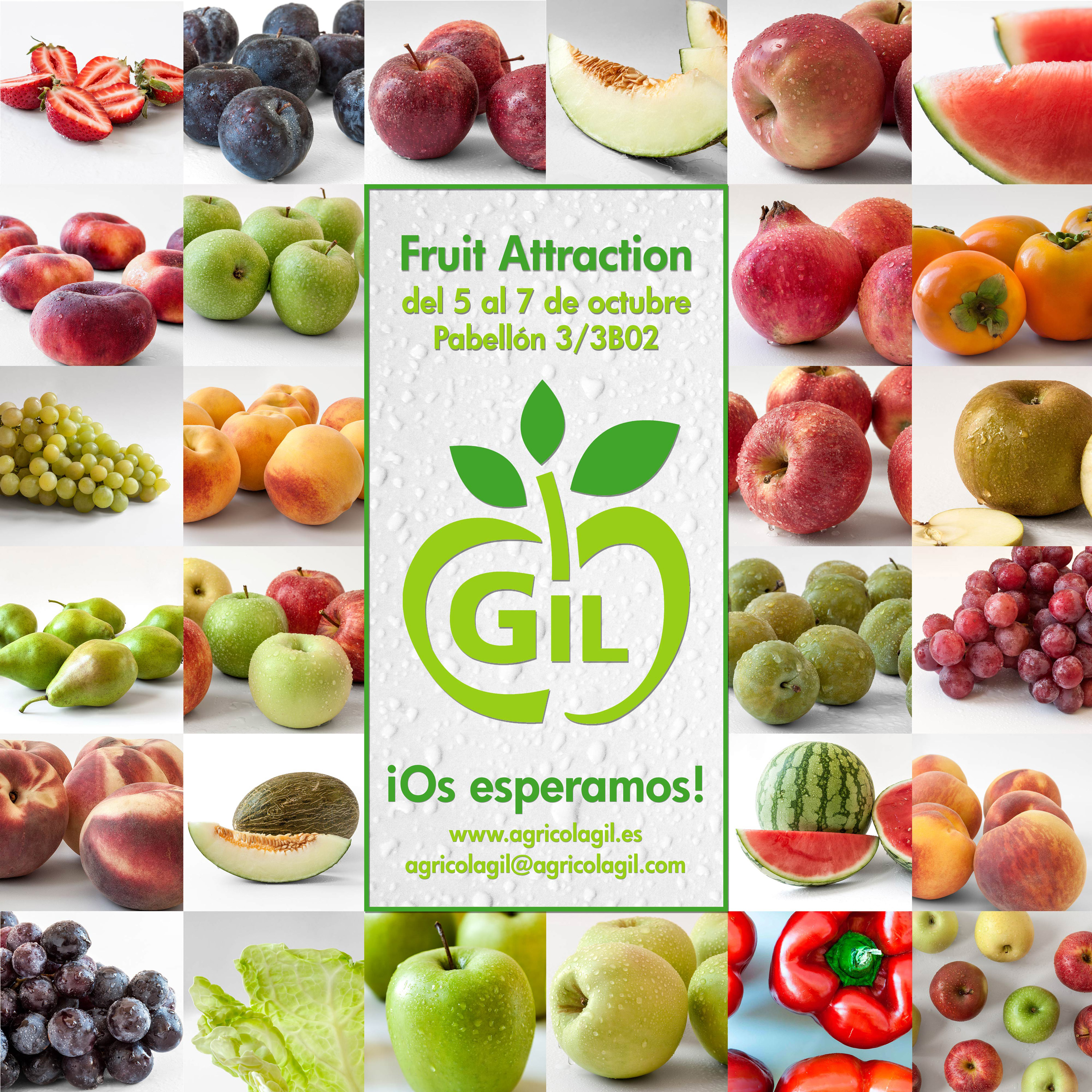 FRUIT ATTRACTION 2016 AGRICOLA GIL